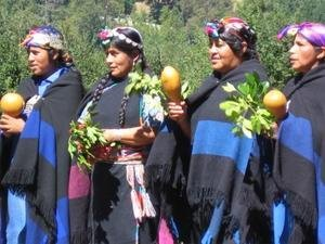 UNPO Mapuche Communities Draft Proposal For Law On Education In - Argentina mapuche